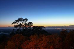 Bellbird Hill Lookout