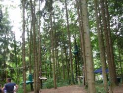 Forêt'Vasion