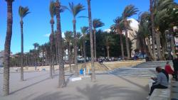 Parque de Elche