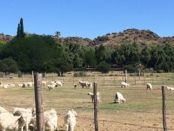 Doornberg Guest Farm