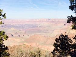 Pink Jeep Tours Grand Canyon