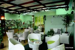 Zelexa Beauty Spa