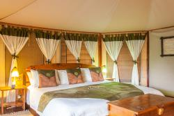 Tipilikwani Mara Camp - Masai Mara