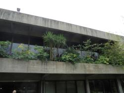 Calouste Gulbenkian Foundation Garden