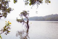 Laknavaram Cheruvu