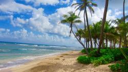 Pelican Cove Beach