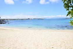 Playa Mann