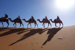 Elencanto de Marruecos