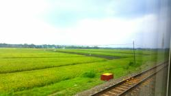Sencaka Pagi Train Trip