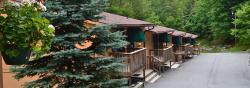 Cedar Village