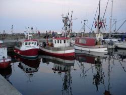 Snogebaek Havn