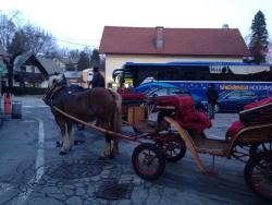 The Fiaker Coachmen of Bled