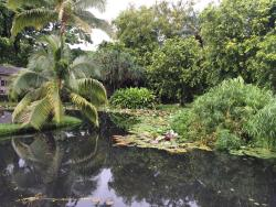 Assemblee De La Polynesie Francaise