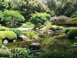 布里斯班植物园