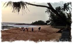 Rugby on the beach
