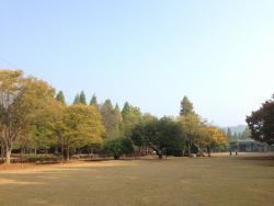 Gyeongsangnamdo Arboretum