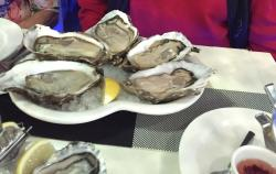 Oyster Express