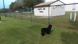 Destin Dog Park
