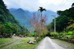 Mukumugi Valley