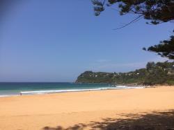 Whale Beach