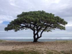 на пляже на юге острова