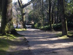 Parque do Fontelo