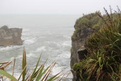 Paparoa National Park Visitor Information Centre