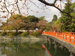 Odawara Castle Chrysanthemum Exhibition