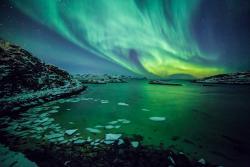 Tromso Safari