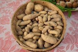 Le patate cornette