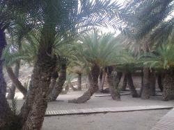 Elena on Crete