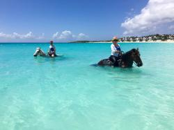 Seaside Stables Anguilla