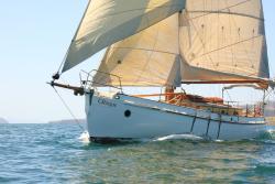 Sail Bruny