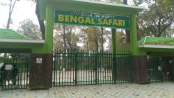 Bengal Safari
