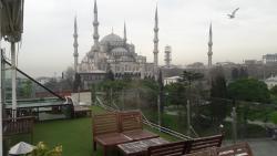 아르마그란디 스피나 이스탄불