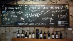 Montevideo Wine Experience