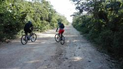 La Ruta de los Cenotes
