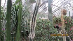Gaiser Conservatory