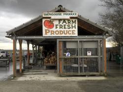 Snow Goose Produce