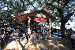Sand Gnat Bar
