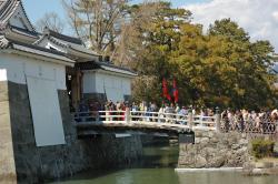 Shizuoka Matsuri