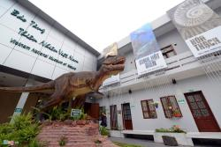 ‪Vietnam National Museum of Nature‬