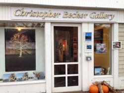 Chris Becker Gallery