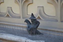 gołebnik
