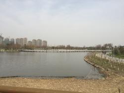 Days Mirror Lake