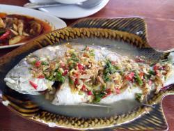 Melayu Samui Seafood Restaurant