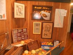 Indian River Citrus Museum