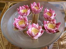 More lotus flowers on display