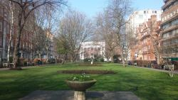 The Queen Square Park and Garden