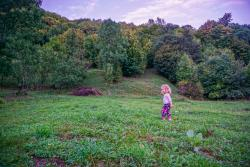 Best rural experience for families we've had in Romania